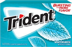 Trident Wintergreen Sugar Free Gum Winter fresh so cool you'll hope spring never comes